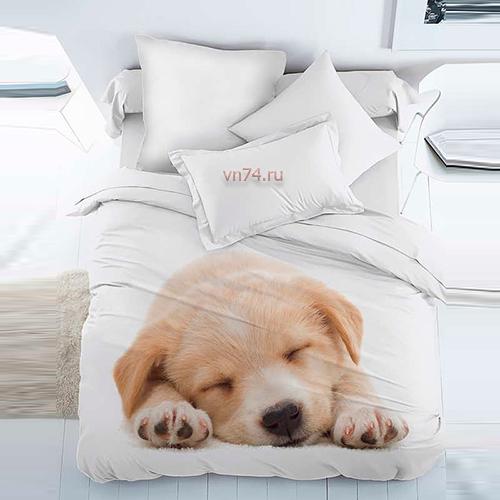 Постельное белье For You Dreams Puppy (перкаль)